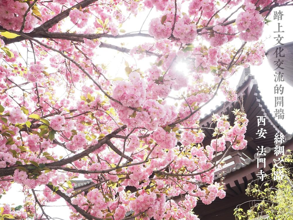 絲路-西安∥法門寺,台北101設計師打造出輝煌舍利塔 ~ 大唐不夜城一睹古都的超現代感