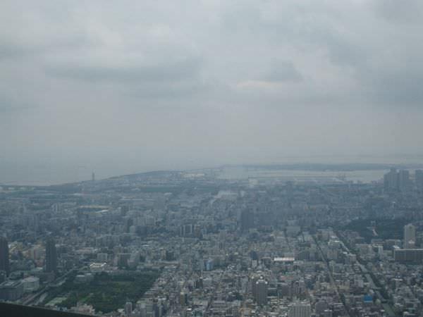 2014 Tokyo (2344) (复制)